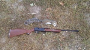 My first 880 squirrel kill